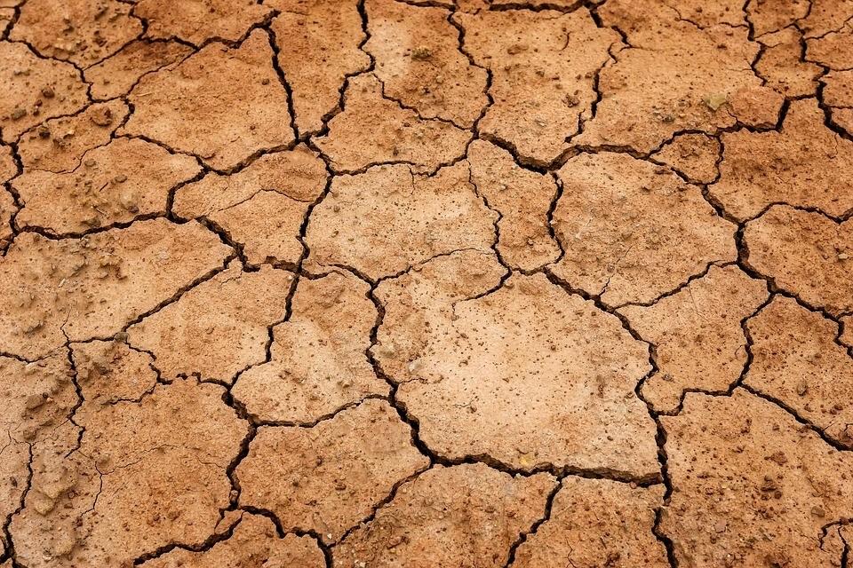 почва земля